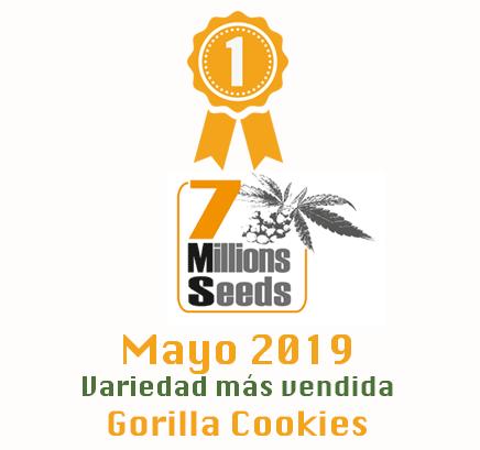 7 millions seeds Gorilla Cookies